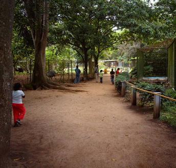 Paramaribo Zoo