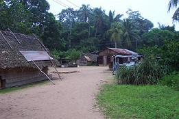 Een Marrondorp in het binnenland van Suriname.