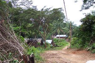Dorpje in het binnenland van Suriname