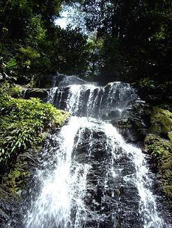 Een waterval in natuurpark Brownsberg.